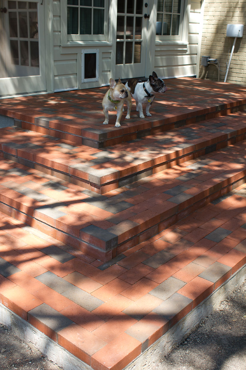Bertha and Bubba survey the realm from their new lofty perch. I'm pretty sure with time and exposure, the intense color of the steps will eventually tone down as my front doorsteps have.