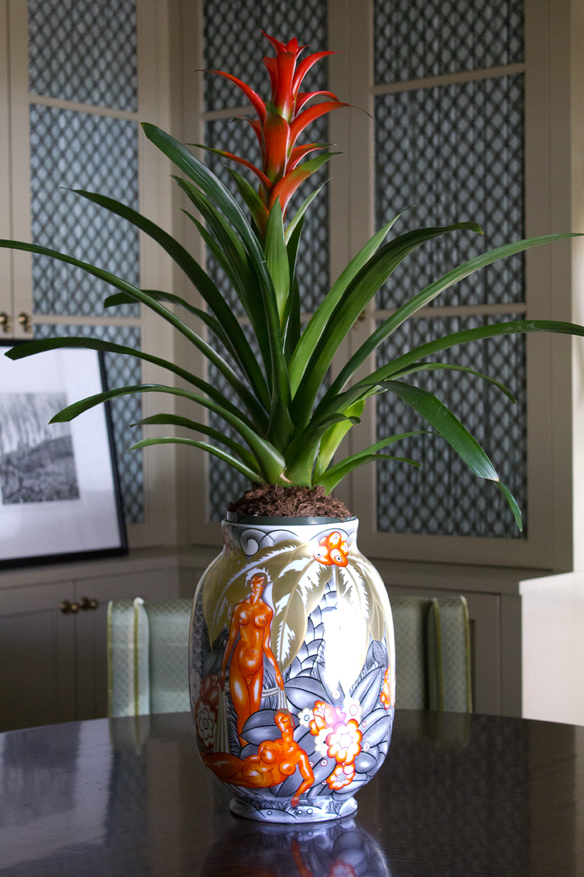 This is the porcelain vase I purchased from Bernardaud in Paris this past fall. Its orange colors along with the Bromeliad's bloom help brighten this room. For some reason saving my photos to the sRGB color space intensifies the reds in a bad way. Sigh.